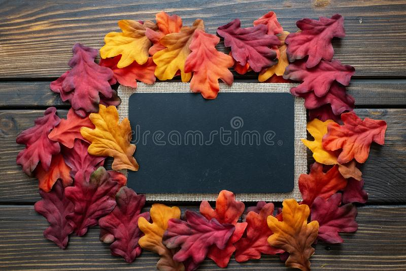 Fundo e quadro de Autumn Thanksgiving com as folhas e as abóboras pequenas que cercam o quadro imagens de stock