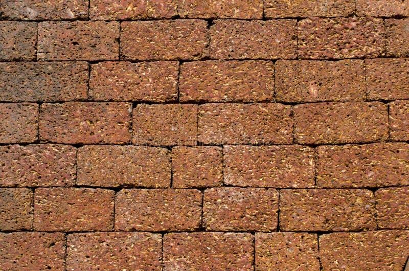 Fundo e textura da parede de tijolo do templo em Goa, Índia fotografia de stock