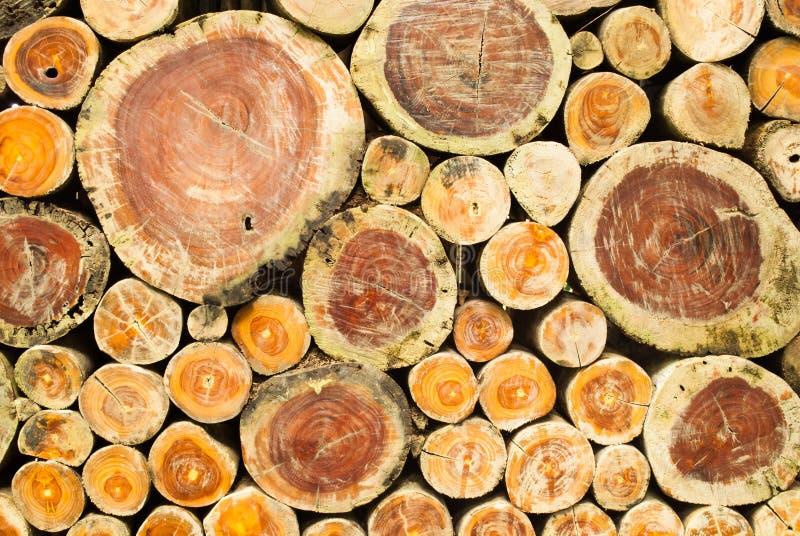Fundo empilhado do corte da madeira fotografia de stock