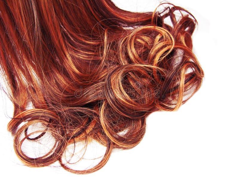 Fundo encaracolado da forma do sumário da textura do cabelo foto de stock royalty free
