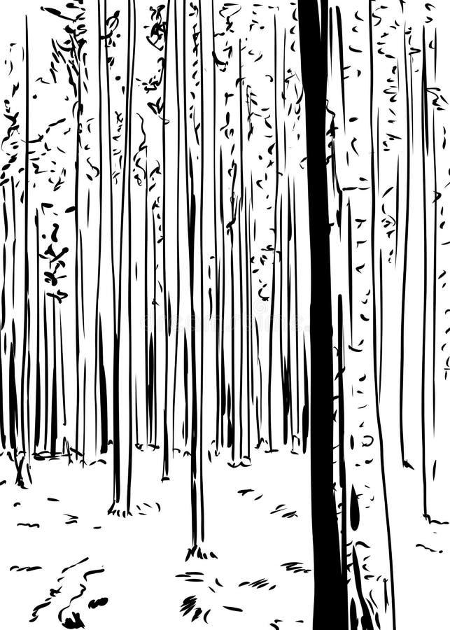 Fundo esboçado da floresta com árvores altas ilustração do vetor