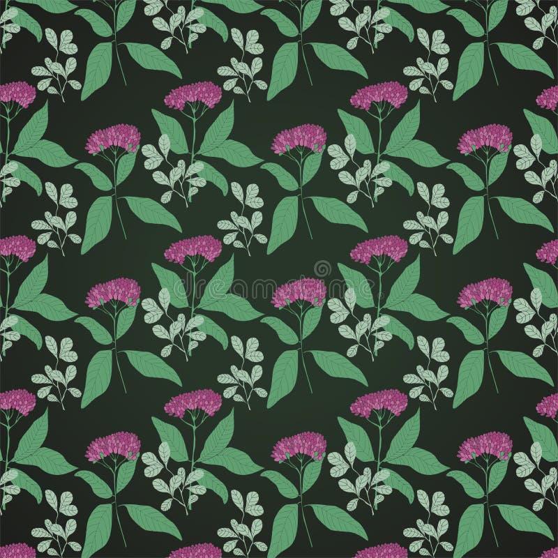 Fundo escuro do teste padrão com flores roxas ilustração stock