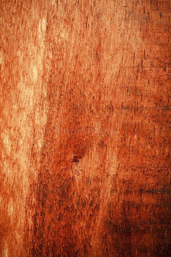 Fundo escuro molhado da textura da sequoia vermelha foto de stock