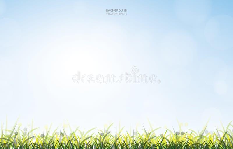 Fundo exterior do campo de grama verde com fundo da luz suave e do céu azul ilustração do vetor