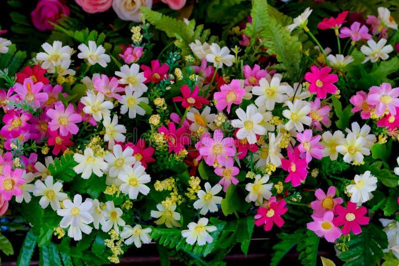 Fundo falsificado das flores fotografia de stock royalty free
