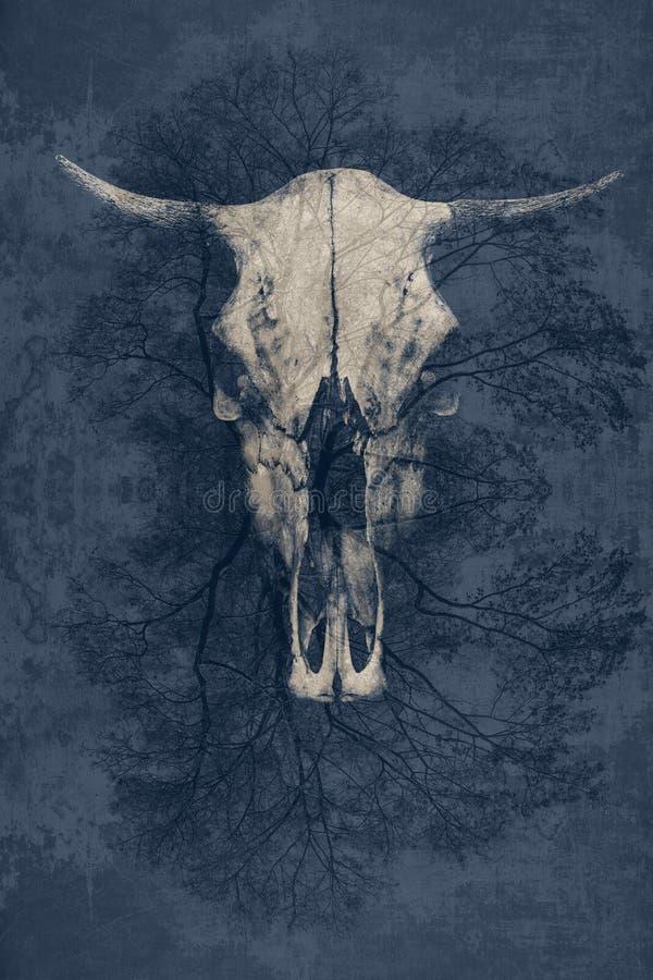 Fundo fantástico, um crânio do ` s do touro com chifres fotos de stock royalty free