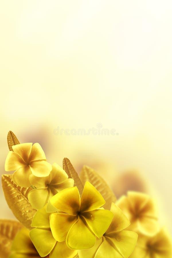 Download Fundo floral foto de stock. Imagem de foco, presente - 26524080