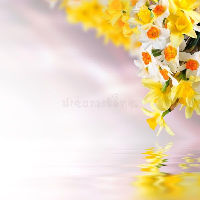 Fundo floral 15 foto de stock