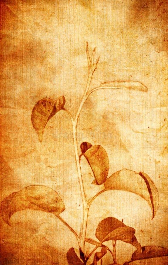 Fundo floral antiquado ilustração royalty free