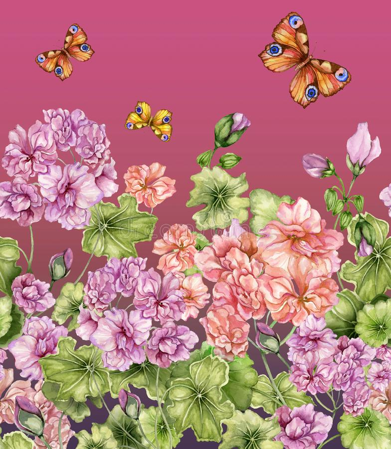 Fundo floral bonito com flores e borboletas do pelargonium Teste padrão botânico sem emenda, beira Pintura da aguarela ilustração do vetor