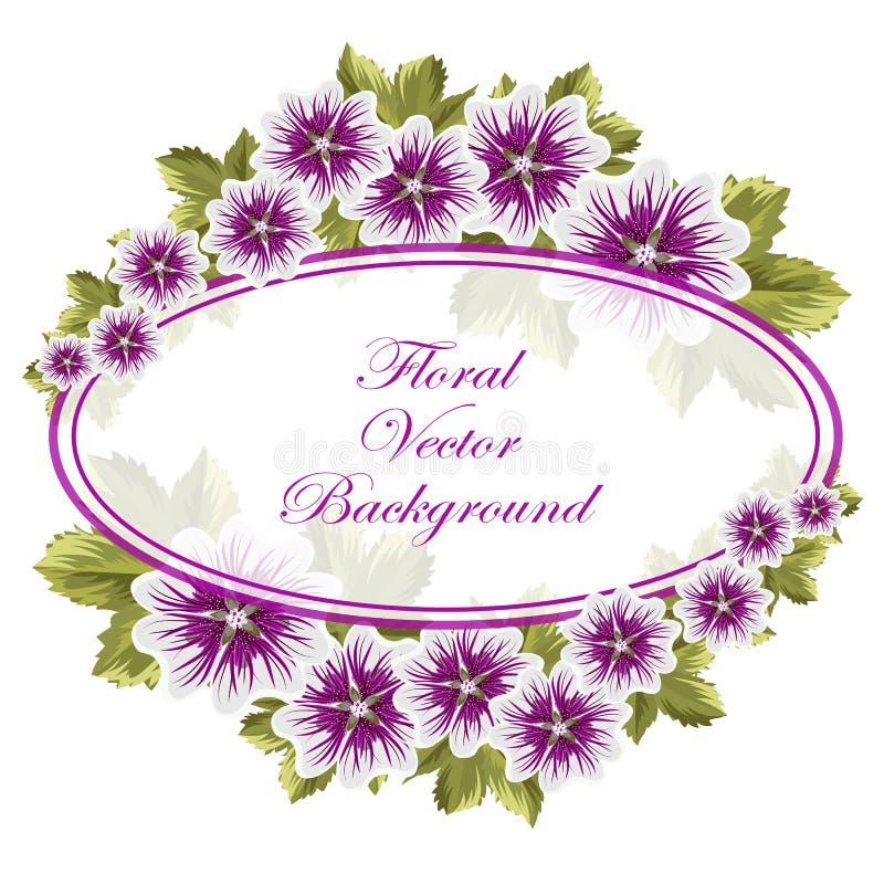 Fundo floral bonito com malvas ilustração stock