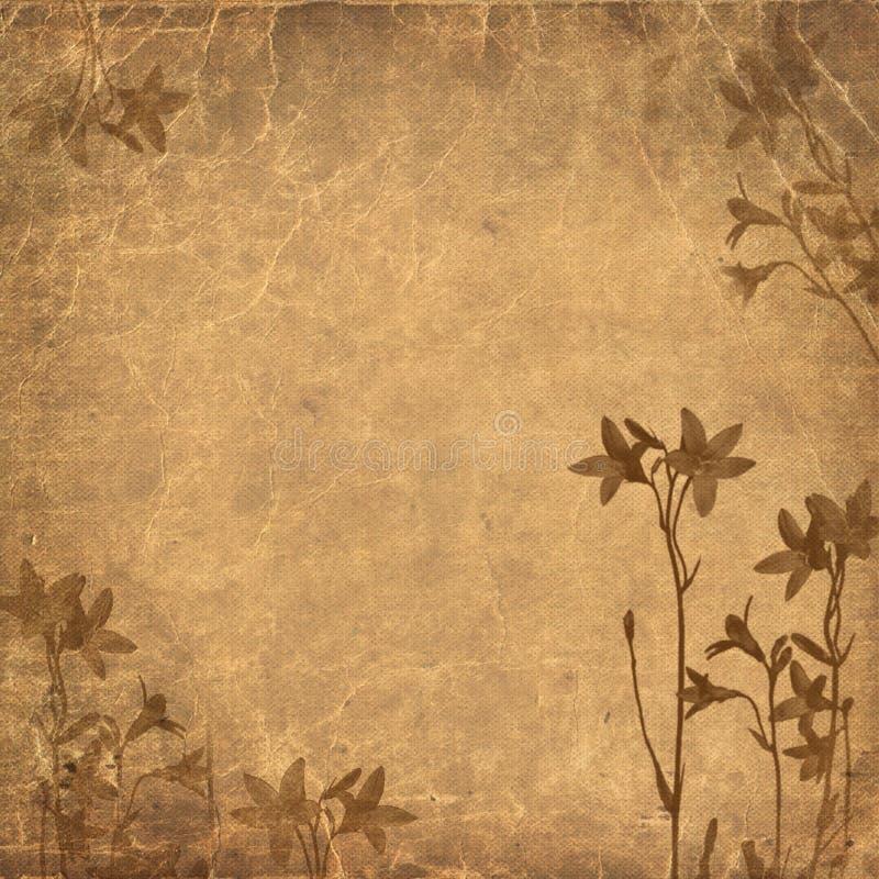 Download Fundo Floral Brown De Grunge Ilustração Stock - Ilustração de parchment, vintage: 12804962