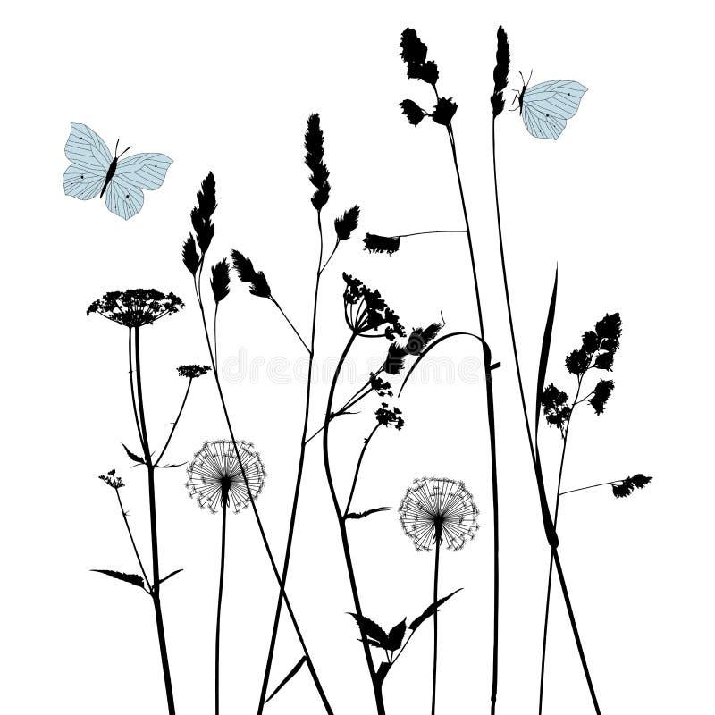 Fundo floral com dente-de-leão ilustração royalty free