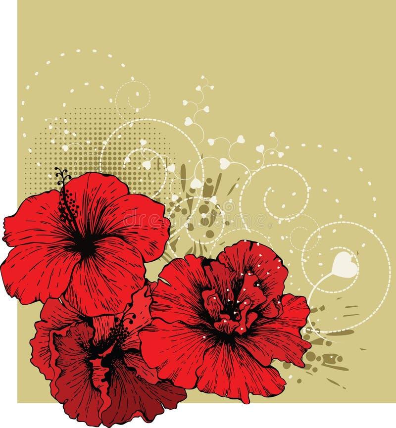 Fundo floral com hibiscus vermelho ilustração stock