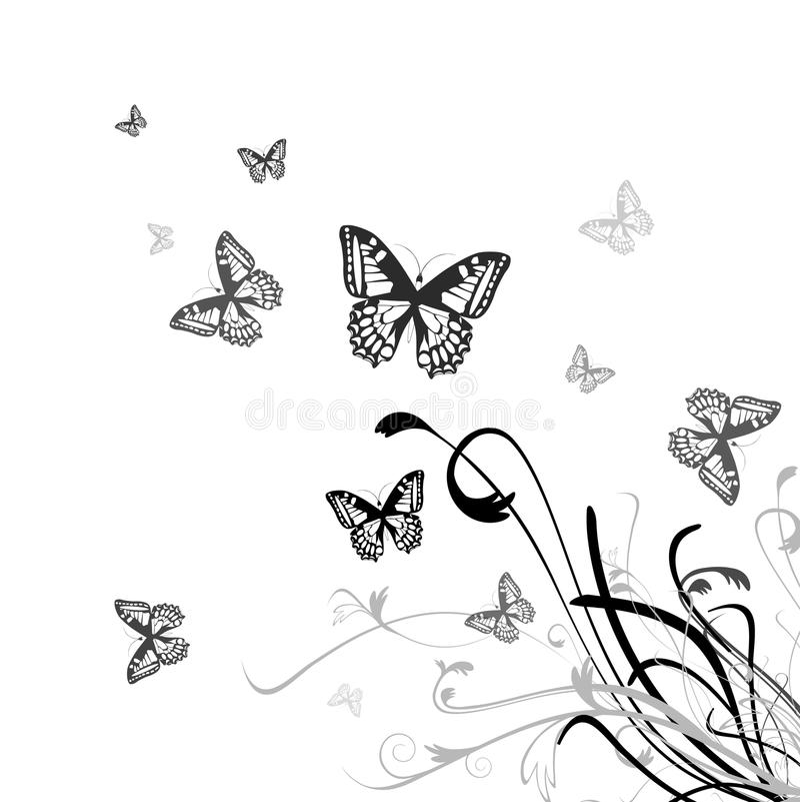 Fundo floral da borboleta ilustração do vetor