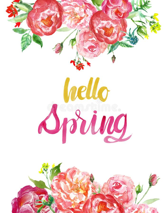 Fundo floral da estação de mola da aquarela com as flores vermelhas e cor-de-rosa coloridas e olá! citações da rotulação d foto de stock royalty free