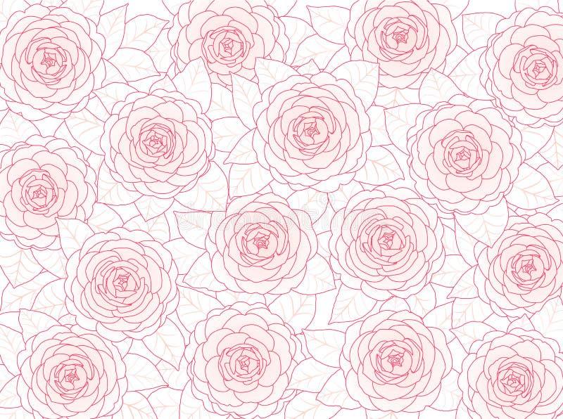 Fundo floral de camélias cor-de-rosa em um fundo branco ilustração stock