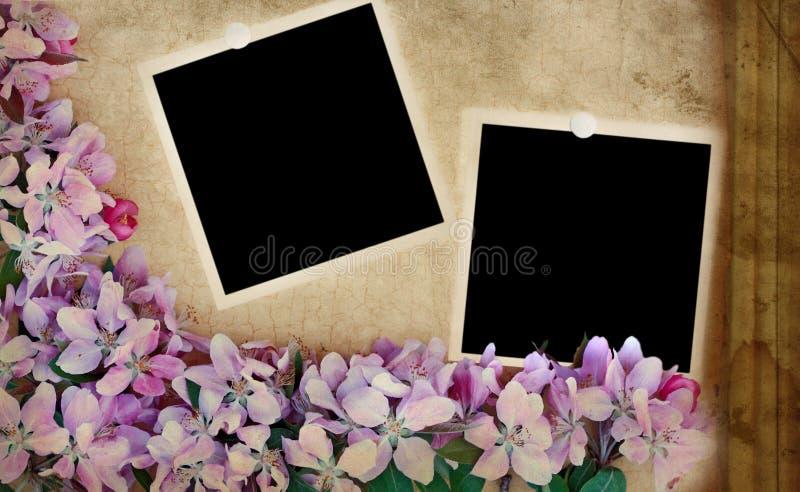 Fundo floral de Grunge com fotos em branco ilustração royalty free