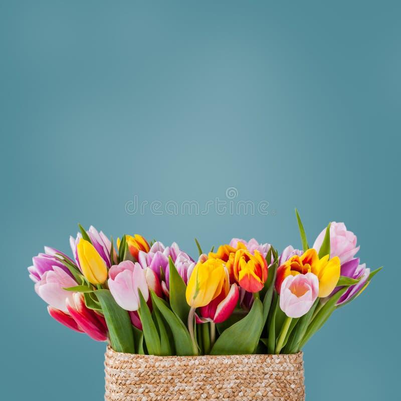 Fundo floral de Sprind para o projeto fotografia de stock