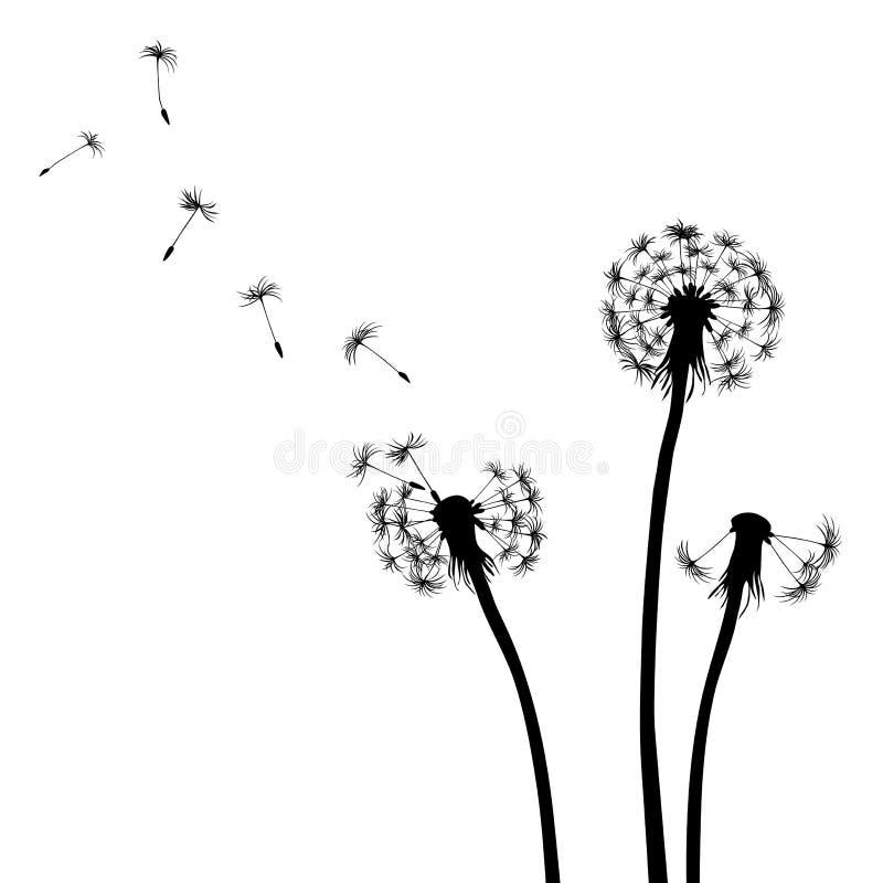 Fundo floral, dente-de-leão ilustração royalty free