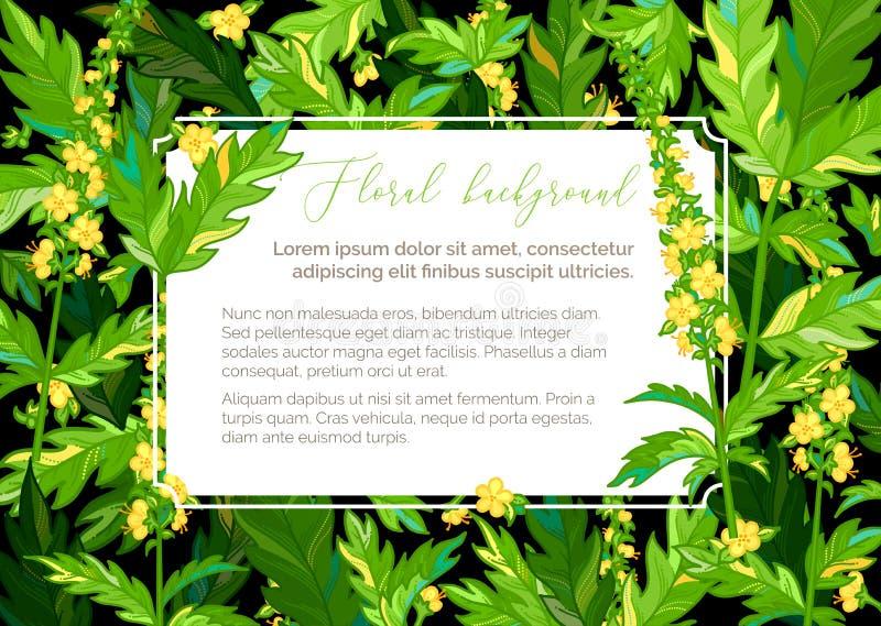 Fundo floral do verão do vetor ilustração do vetor