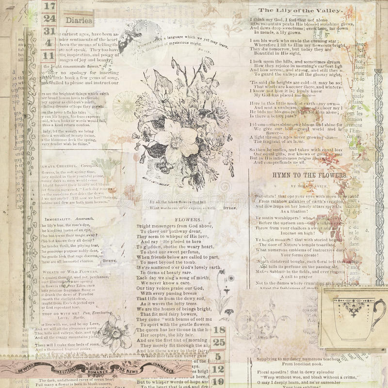 Fundo floral do vintage com texto fotos de stock royalty free