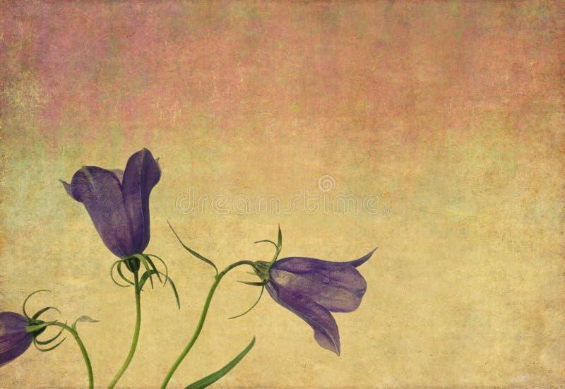 Fundo floral Earthy ilustração do vetor