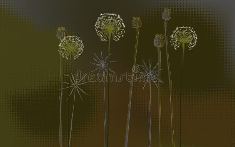 Fundo floral, poppys e dentes-de-leão - papel de parede do Desktop ilustração do vetor