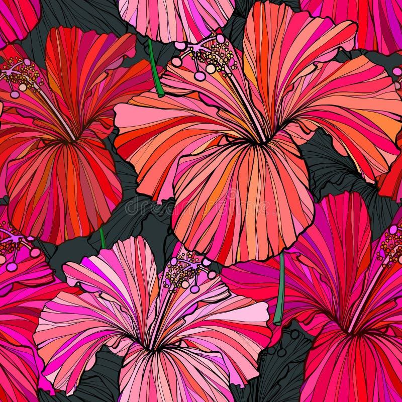 Fundo floral sem emenda bonito do teste padrão da selva Fundo brilhante da cor das flores tropicais Flor do hibiscus realística ilustração royalty free