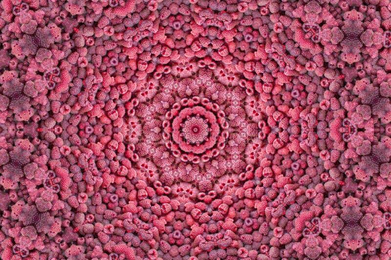 Fundo fresco da framboesa do fractal do caleidoscópio As bagas das framboesas da textura fecham-se acima ilustração stock
