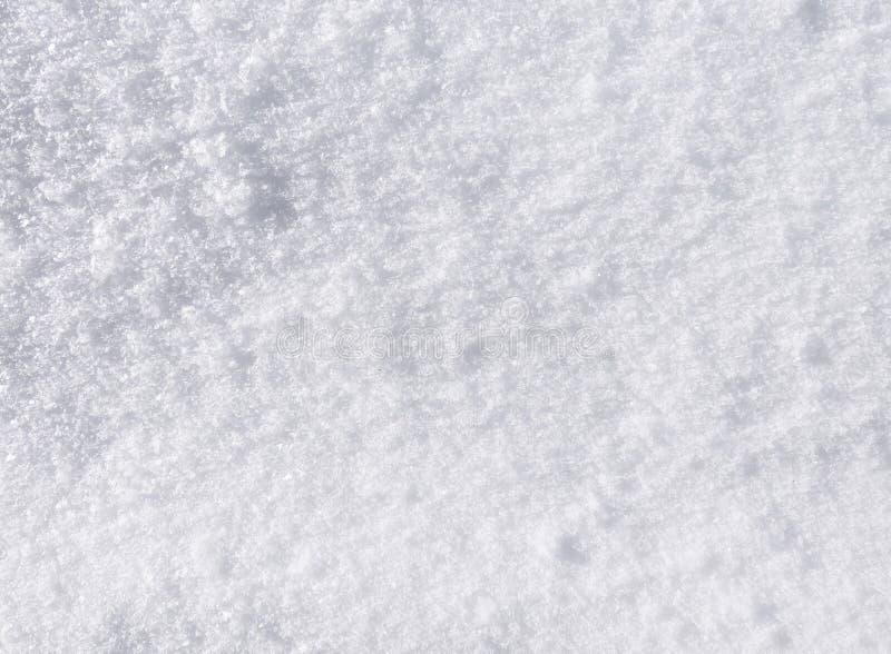 Fundo fresco da neve imagens de stock royalty free