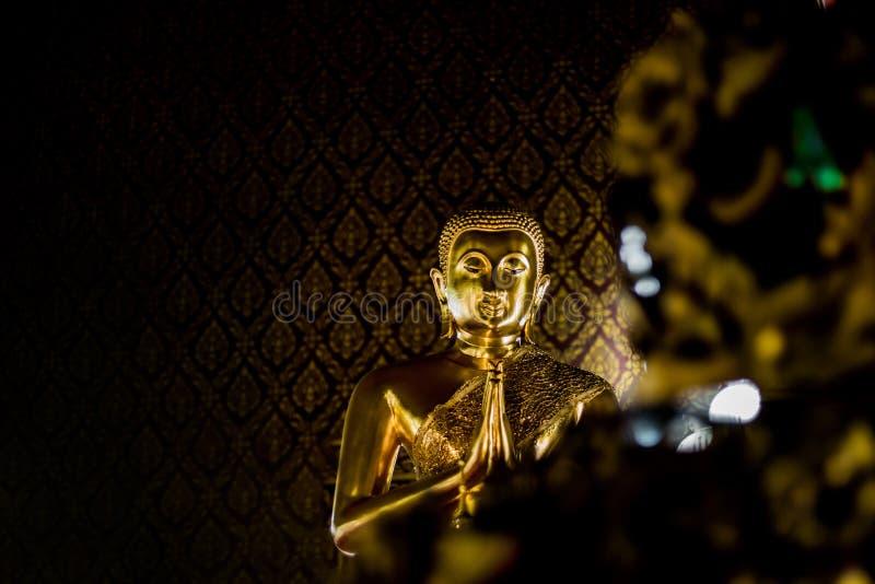 Fundo grande do teste padrão do whit da Buda do ouro fotografia de stock