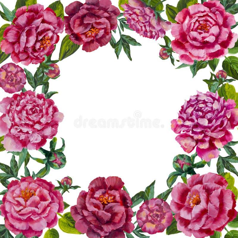 Fundo isolado da flor da pintura quadro redondo Grinalda redonda da flor ilustração do vetor