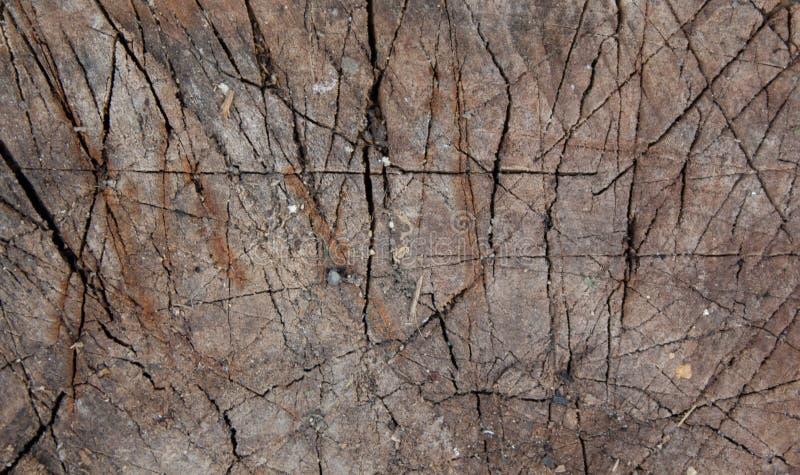 Fundo marrom natural de madeira com cicatrizes e testes padrões Venezianas de madeira ?rvore queimada fotos de stock