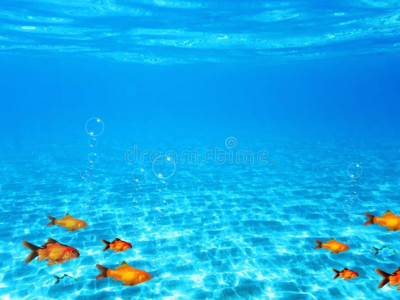 Fundo mergulhando subaquático com água azul e os peixes pequenos coloridos fotografia de stock royalty free