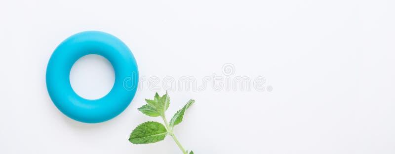 Fundo minimalistic zero do conceito do caloria e o zero do desperdício Toro azul e folhas de hortelã verdes frescas no fundo bran foto de stock royalty free