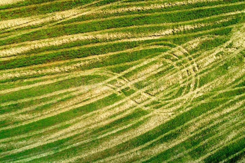 Fundo natural abstrato Ideia aérea de um campo chanfrado foto de stock royalty free