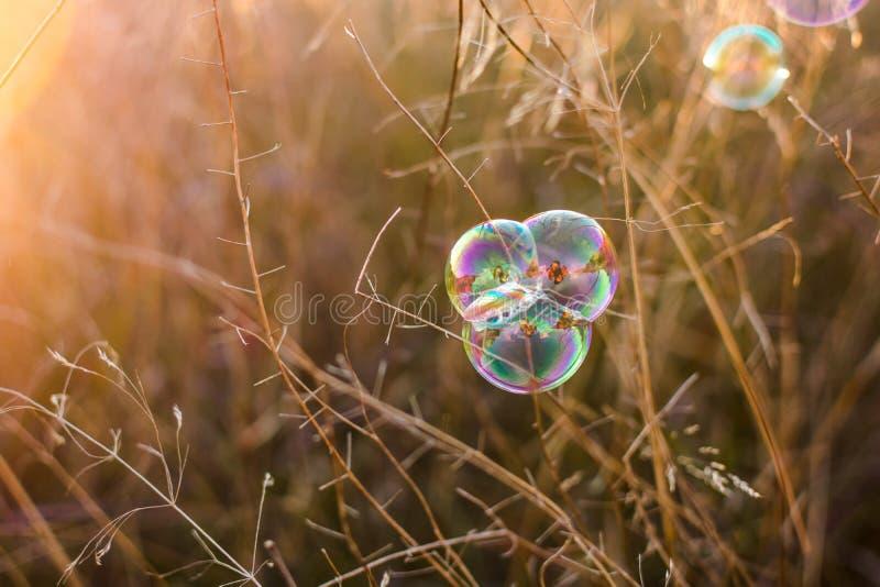 Fundo natural bonito com bolhas de sab?o Vibra??es do outono imagens de stock