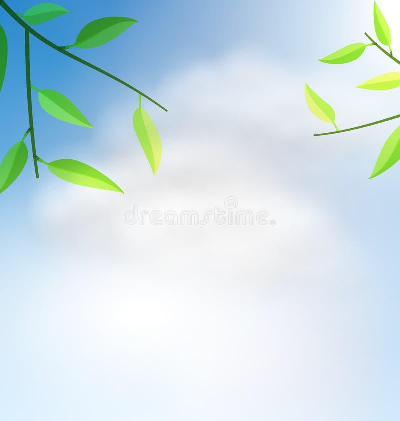 Fundo natural com árvore do ramo ilustração stock