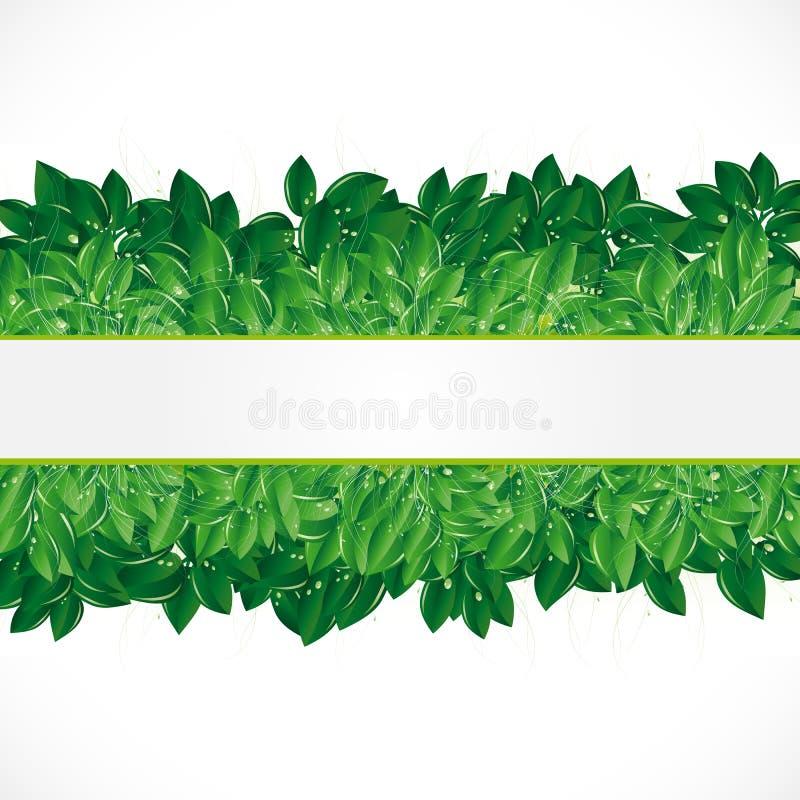 Fundo natural com folhas verdes. ilustração do vetor
