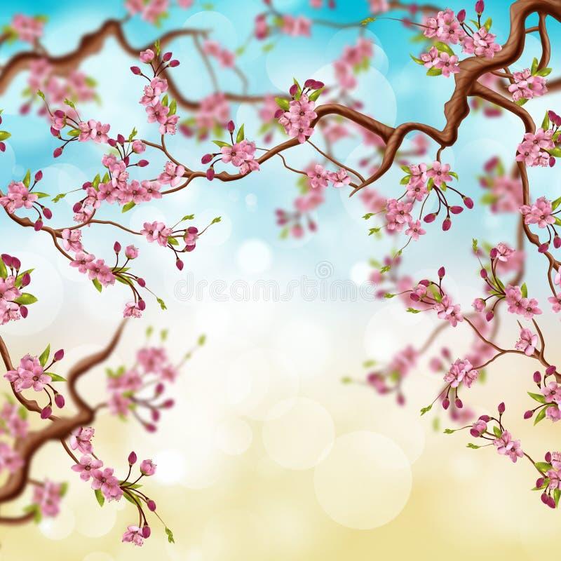 Fundo natural da árvore bonita da flor de cerejeira ilustração do vetor