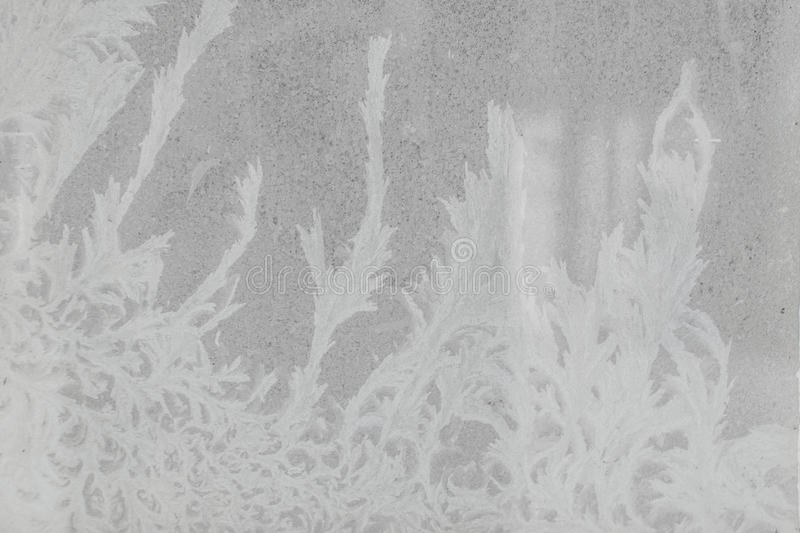 Fundo natural, textura fotografia de stock
