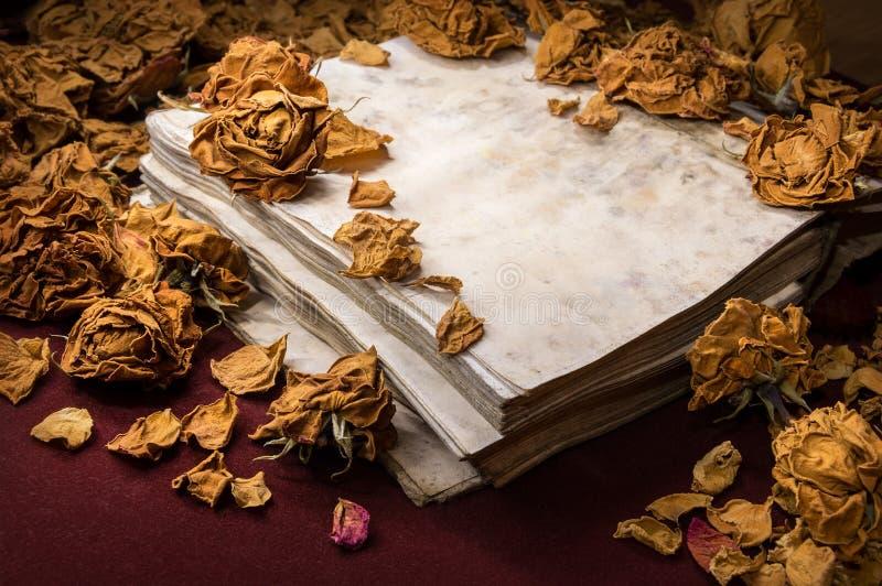 Fundo no estilo retro Rosas secas dispersadas no livro velho fotografia de stock