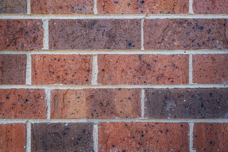 Fundo novo da textura da parede de tijolo vermelho com almofariz cinzento fotos de stock