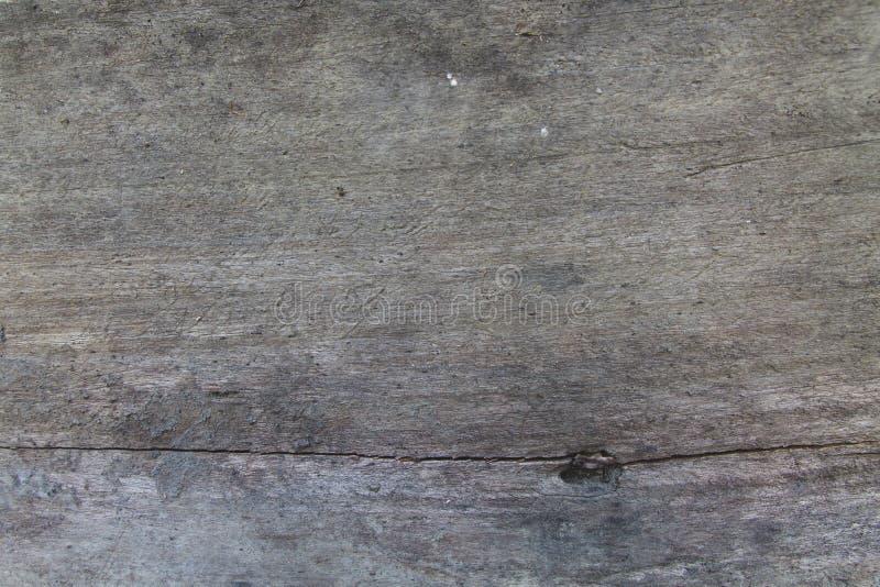 Fundo ou textura de madeira fotos de stock royalty free