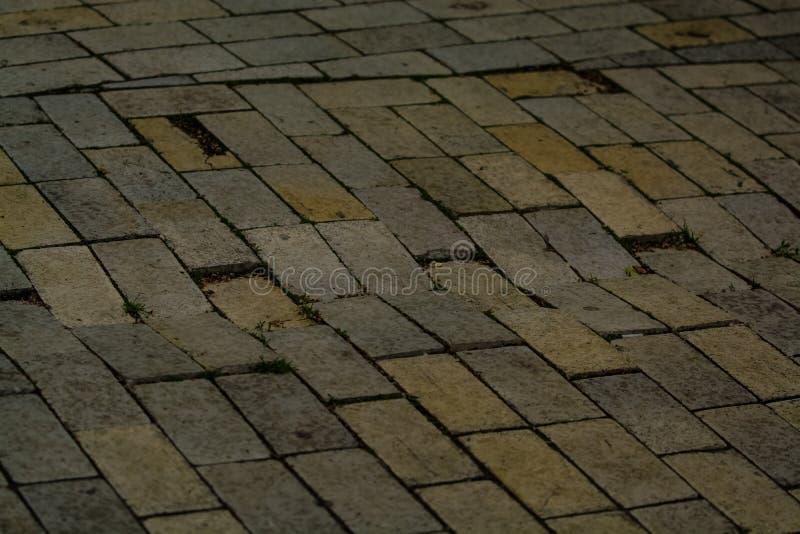 Fundo ou textura de uma telha quebrada e igual com os remendos da luz e das gotas Blocos de pedra no passeio imagens de stock royalty free