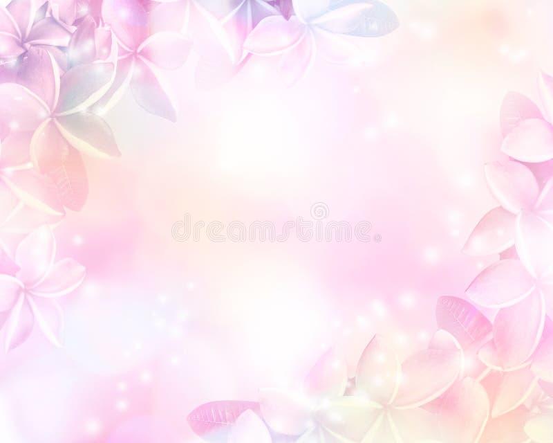 Fundo pastel abstrato floral com espaço da cópia fotos de stock royalty free