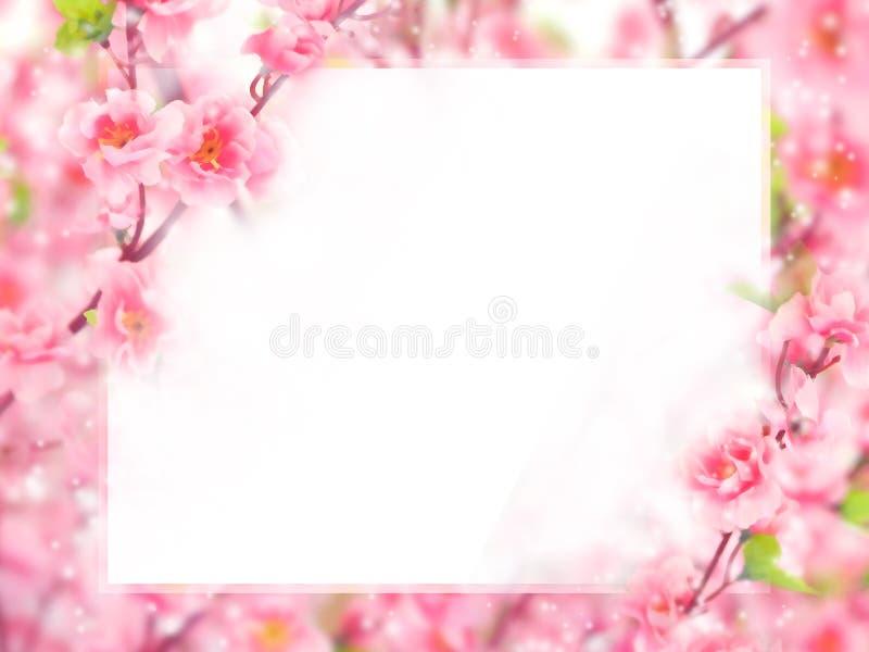 Fundo pastel abstrato floral com espaço da cópia foto de stock royalty free