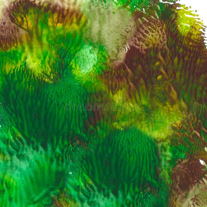 Fundo pintado acrílico abstrato Cor vibrante textured verde, marrom, amarela imagem de stock royalty free