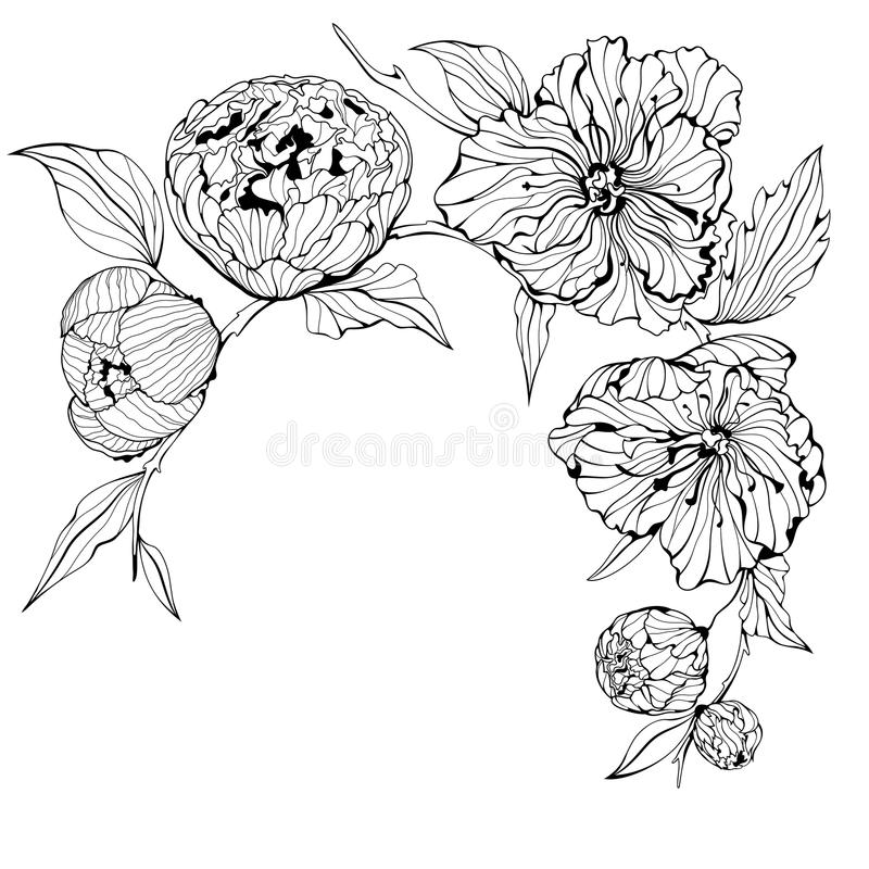 Fundo preto e branco com flores ilustração stock